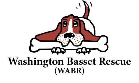 Washington Basset Rescue